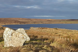 Loch Stemster and Munsary Peatlands Nature Reserve