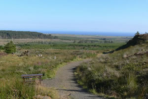 Rumster Forest Walks - near Lybster in Caithness